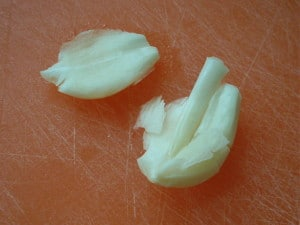 garlic germ