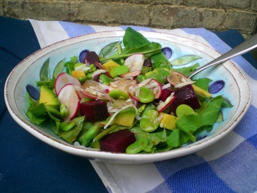 fava bean radish avocado and beet salad