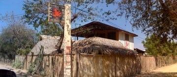 Rana Roja Nicaragua