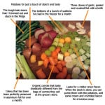 Anatomy of Vegetable Stock