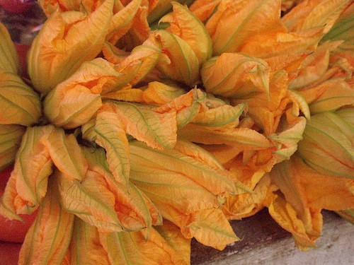 fried zucchini blossoms, venice, italy