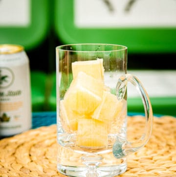 beer ice cubes for summer cocktails