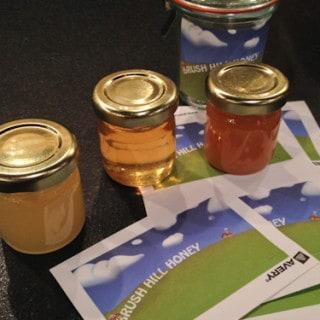 A Beginner's Tale of Beekeeping