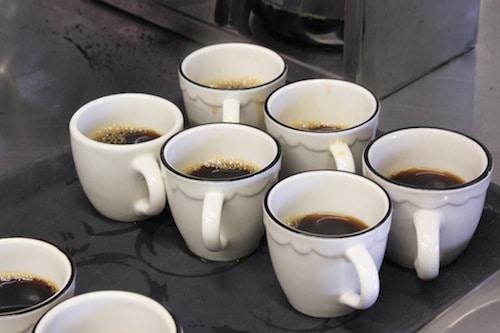 small world coffee, princeton nj