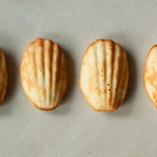Eating My Words: Marcel Proust's Evocative Madeleines