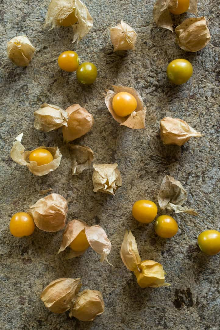 ground cherry, aka husk cherry or cape gooseberry