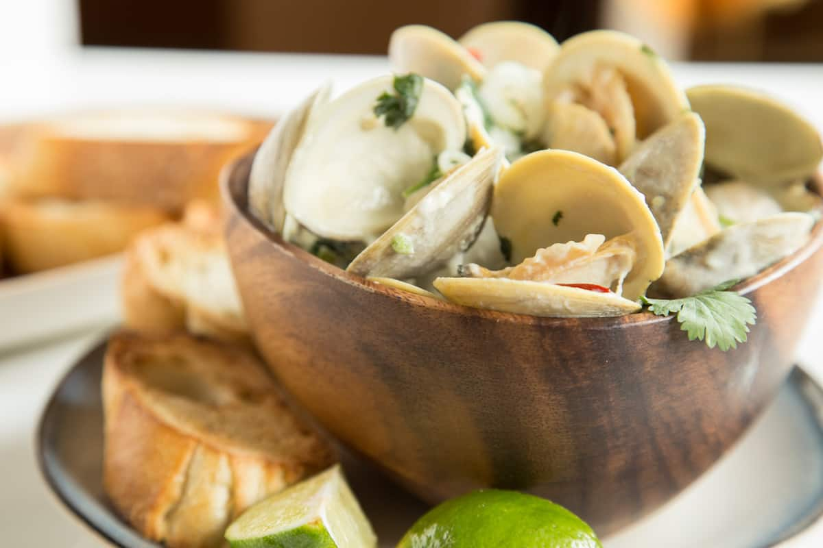 Thai coconut clams simmered in a curry-inspired broth are a whole new kind of comfort food. Serve with crusty bread or rice noodles for a quick meal.