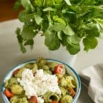 Go Wild for Watercress Pesto