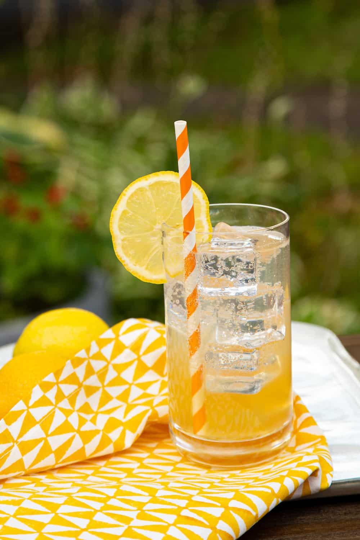 gin passionfruit lemon cocktail