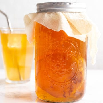 homemade kombucha and SCOBY