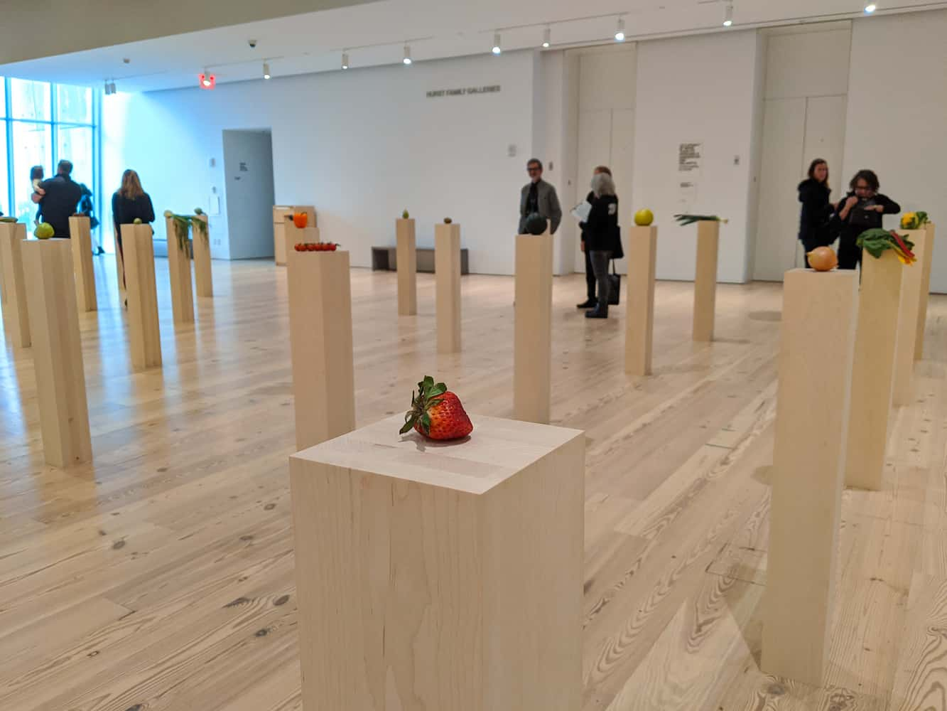 whitney museum fruits and vegetables exhibition